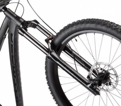 Hornet_bike (1)
